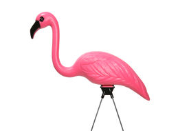 stock photo of pink flamingos  - Isolated pink lawn flamingo - JPG