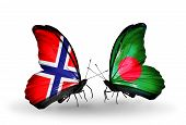Two Butterflies With Flags On Wings As Symbol Of Relations Norway And Bangladesh