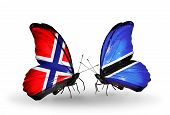 Two Butterflies With Flags On Wings As Symbol Of Relations Norway And Botswana