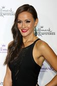 LOS ANGELES - JAN 8:  Crystal Lowe at the Hallmark TCA Party at a Tournament House on January 8, 2014 in Pasadena, CA