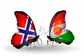 Two Butterflies With Flags On Wings As Symbol Of Relations Norway And  Niger