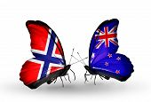 Two Butterflies With Flags On Wings As Symbol Of Relations Norway And New Zealand