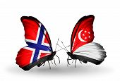 Two Butterflies With Flags On Wings As Symbol Of Relations Norway And Singapore