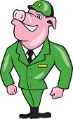 World War Two Pig Soldier Attention Cartoon Isolated