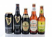 Guinness Beer 5 Styles