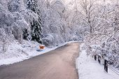 foto of storms  - Winter road through icy forest covered in snow after ice storm and snowfall - JPG