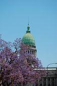 Argenitinian Capitol Building