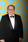 LOS ANGELES - JAN 11:  Kevin Dunn at the HBO Post Golden Globe Party at a Circa 55, Beverly Hilton Hotel on January 11, 2015 in Beverly Hills, CA