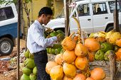 Trichy, India - February 15: An Unidentified Man Stands Near The Coconuts. India, Tamil Nadu, Near T