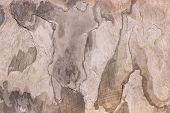 Pattern of a stone slab in beige, gray, brown