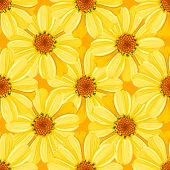 Retro flower seamless pattern - daisy. Vector.