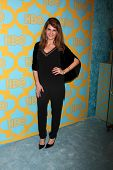 LOS ANGELES - JAN 11:  Nia Vardalos at the HBO Post Golden Globe Party at a Circa 55, Beverly Hilton Hotel on January 11, 2015 in Beverly Hills, CA