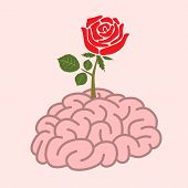 Brain And Rose