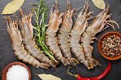 pic of tiger prawn  - Fresh raw tiger prawns and spices on black stone plate - JPG