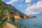 pic of lagos  - pictorial village gargnano lago di garda lakeside promenade with oleander and church - JPG