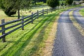 foto of split rail fence  - Image of a gravel road in the countryside with a split rail fence field and woods - JPG