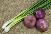 image of onion  - Onion and spring onion on sack background - JPG