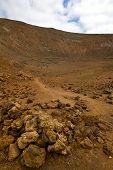 image of volcanic  - wood plant bush timanfaya in los volcanes volcanic rock stone sky hill and summer lanzarote spain - JPG