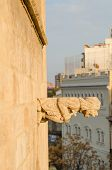 picture of gargoyles  - Gargoyle on the facade of a medieval building - JPG