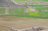 image of cultivation  - View of Cultivated Field in the Canary Islands - JPG