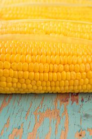 pic of corn cob close-up  - Uncooked freshly picked corn cob sweet raw ear of maize on rustic blue wood background close up image selective focus with shallow depth of field - JPG