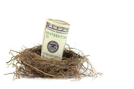 image of nest-egg  - A close up of a roll of hundred dollar bills in a birds nest on a white background - JPG